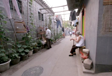 Idyllic Life in a Hutong