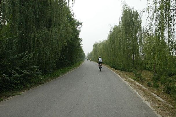Quite Cycling Lane outside of Beijing