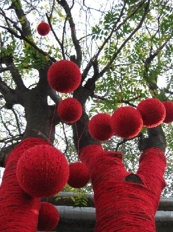 Red Balls in Tree