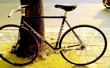Vivalo Fixed Gear