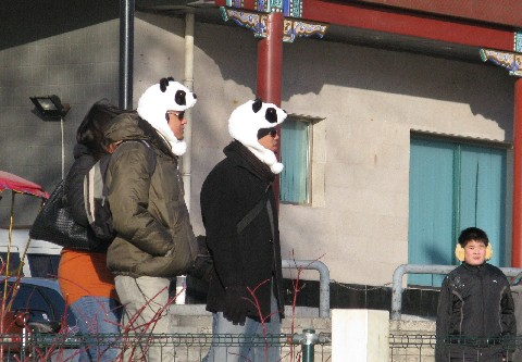 Guys with Panda Bear Hats