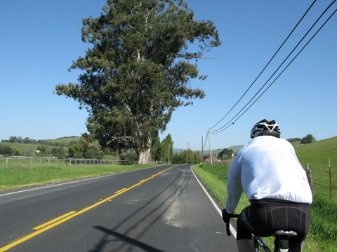 Cycling from Fairfax