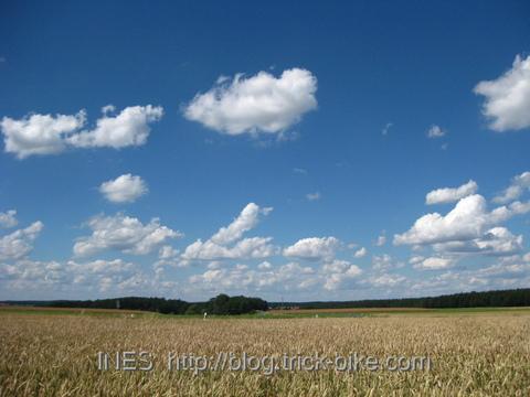 Franconian Fields