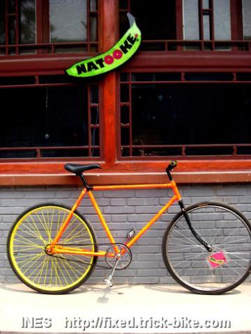 Fede Flying Pigeon Fixed Gear Bike