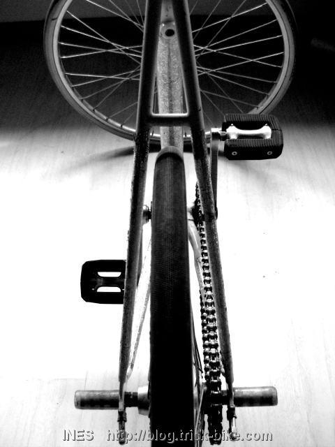 Ines Brunn Fixed Gear Trick Bike in Black and White