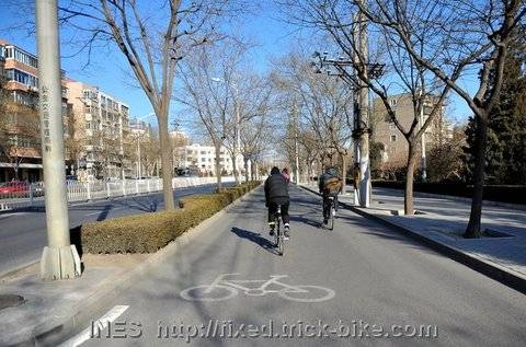 Empty Beijing Bicycle Lane