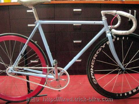 Shannon's Fixed Gear Bike