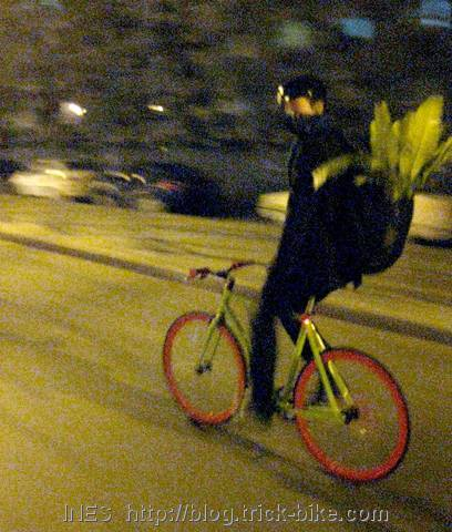 Julien on fixie riding on Beijing streets at night with plant on his back