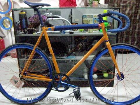 Mike's Fixed Gear Bike