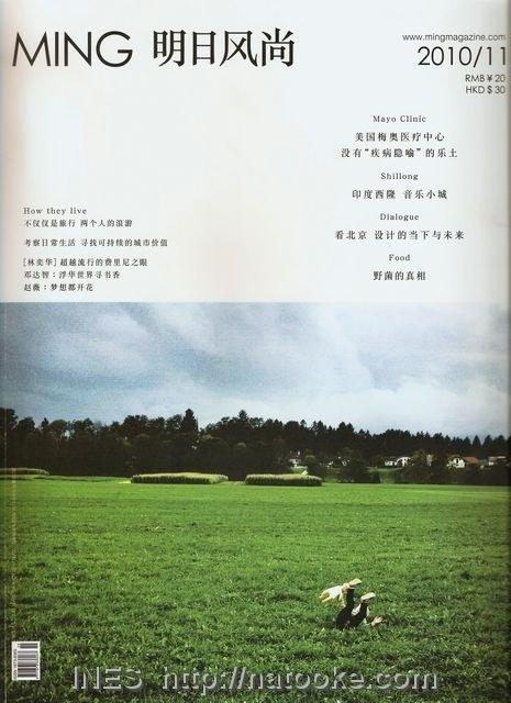 Ming Magazine November 2010