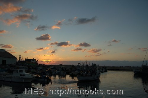 Sunset over Jaffa Harbour