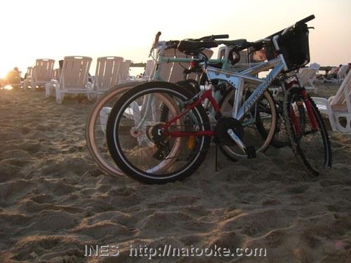 Bikes on Tel Aviv Beach